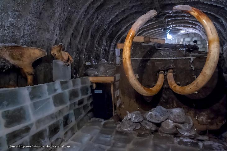 Единственный в своём роде музей мамонта, размещенный в пещере