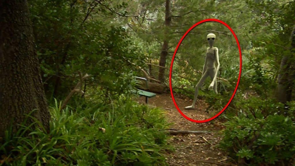 Инопланетяне – реальность или миф?