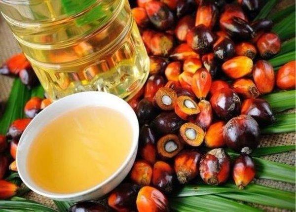 Мифы о пальмовом масле