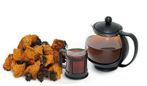 Чай из гриба чаги: 7 рецептов приготовления.