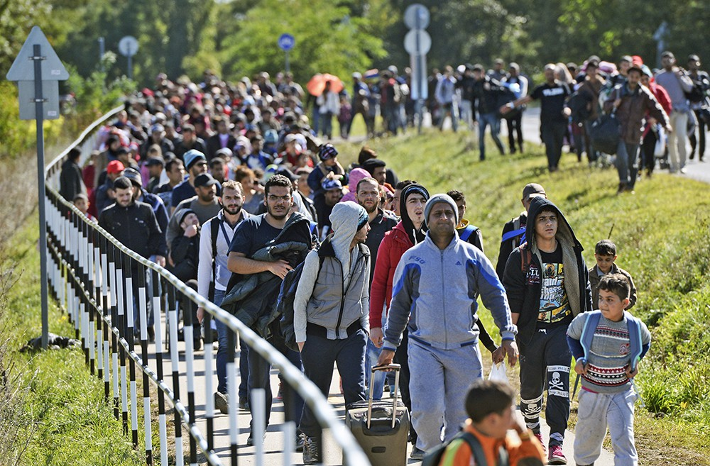 Спасайся, кто может: мигрант…
