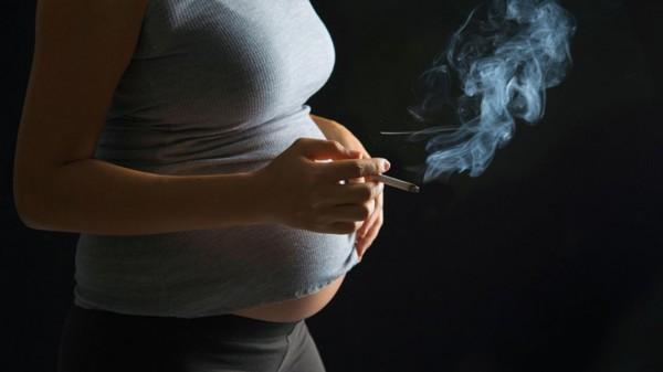 Беременные устроили скандал …