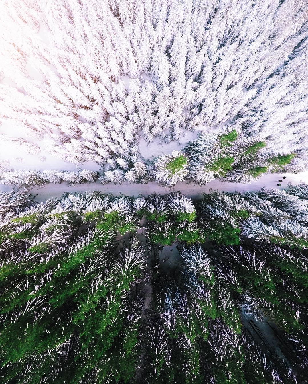 Карпаты с высоты