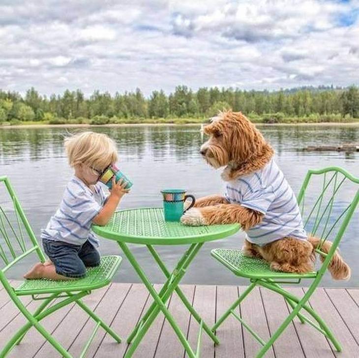 Трогательная дружба усыновле…