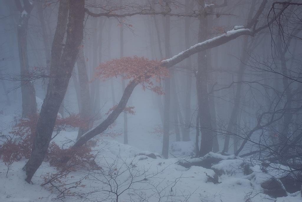 5410 Зимний Крым