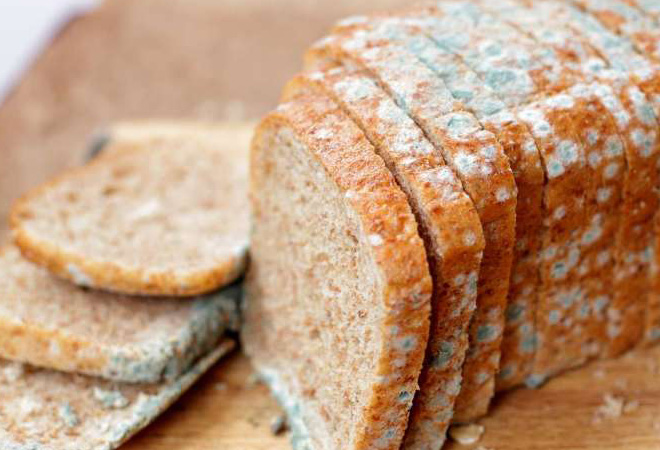 Что будет, если съесть хлеб с плесенью