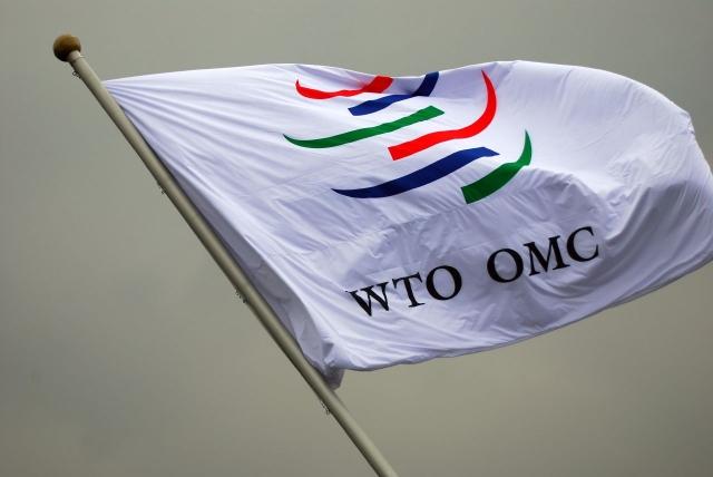 «Единая Россия» и Медведев не допустят выхода РФ из ВТО — Делягин