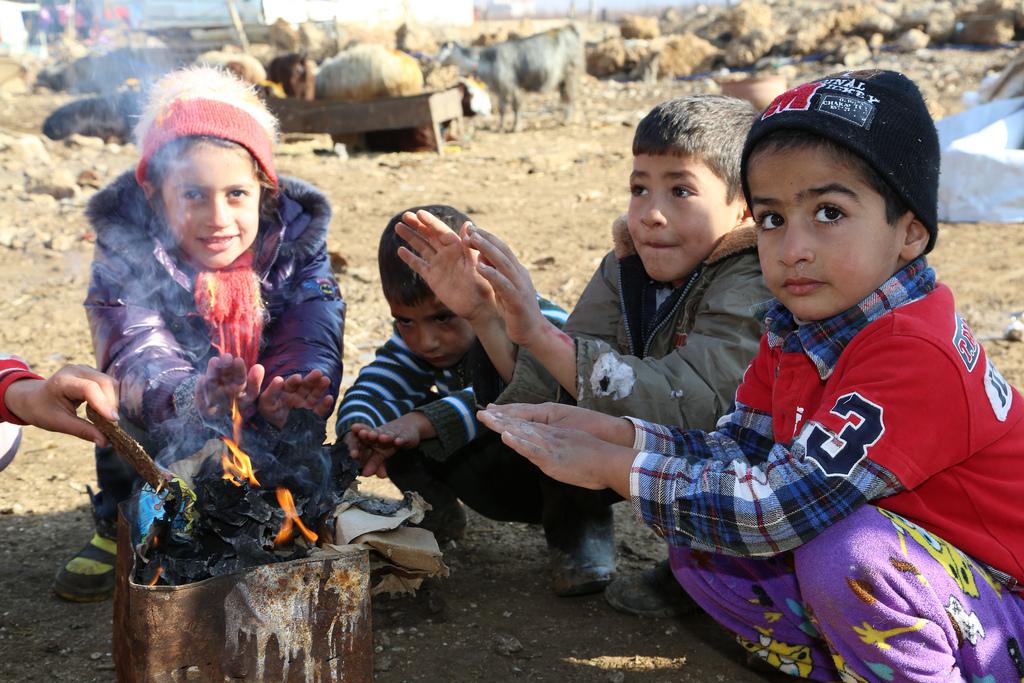 Die Welt: на Ближнем Востоке газировка и пирожные губят больше людей, чем террористы