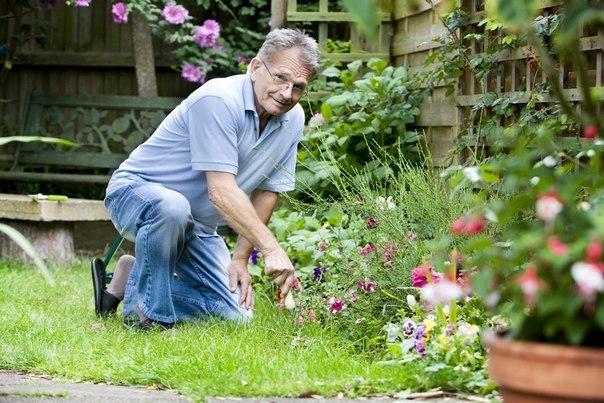 Маленькие секретики (садовод - садоводу)