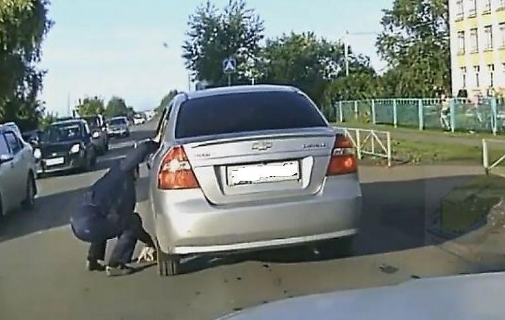 Еще одна спасенная жизнь: омич успел вытащить котенка из-под колес автомобиля