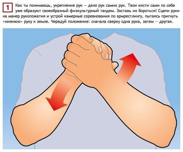 Простые упражнения, тренирующие все 27 мышц рук