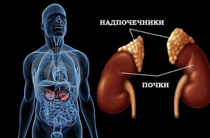 Картинки по запроÑу болезни надпочечников
