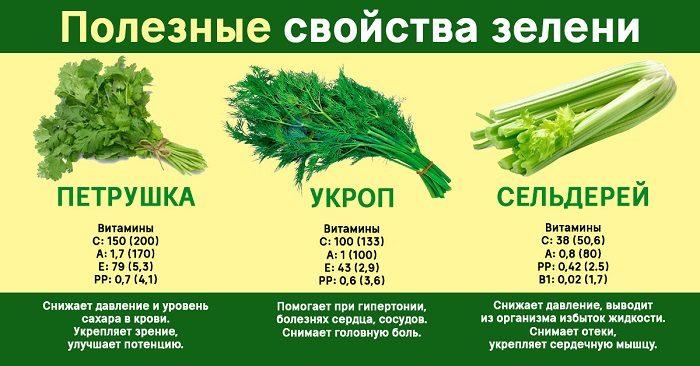 7 видов полезной зелени, которую можно вырастить на подоконнике или грядках