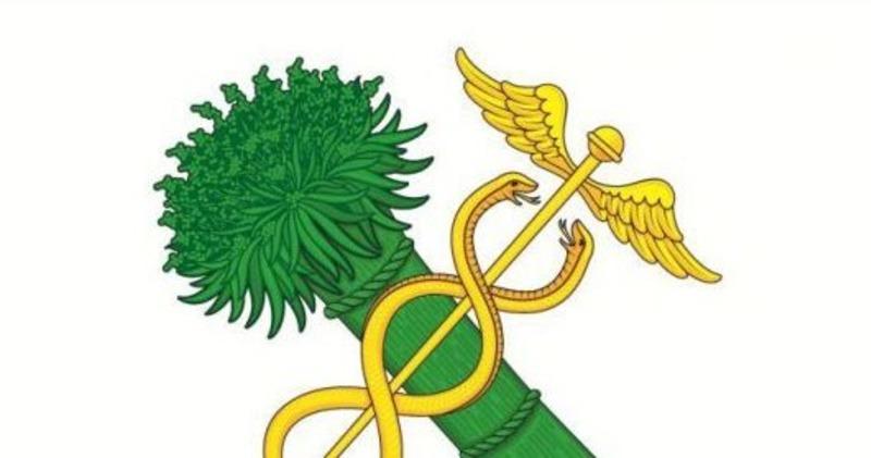 Занимательные флаги: символом города в Брянской области стала связка конопли