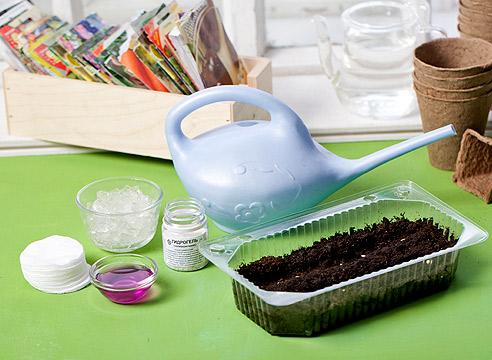 Подготовка семян в домашних условиях