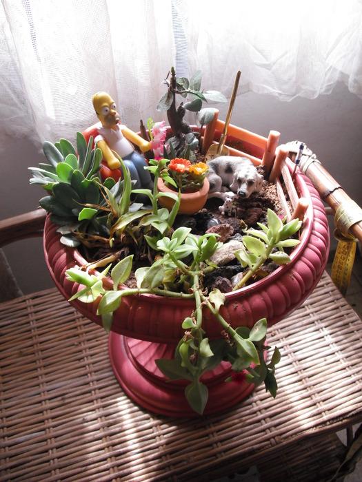 Мои маленькие садики