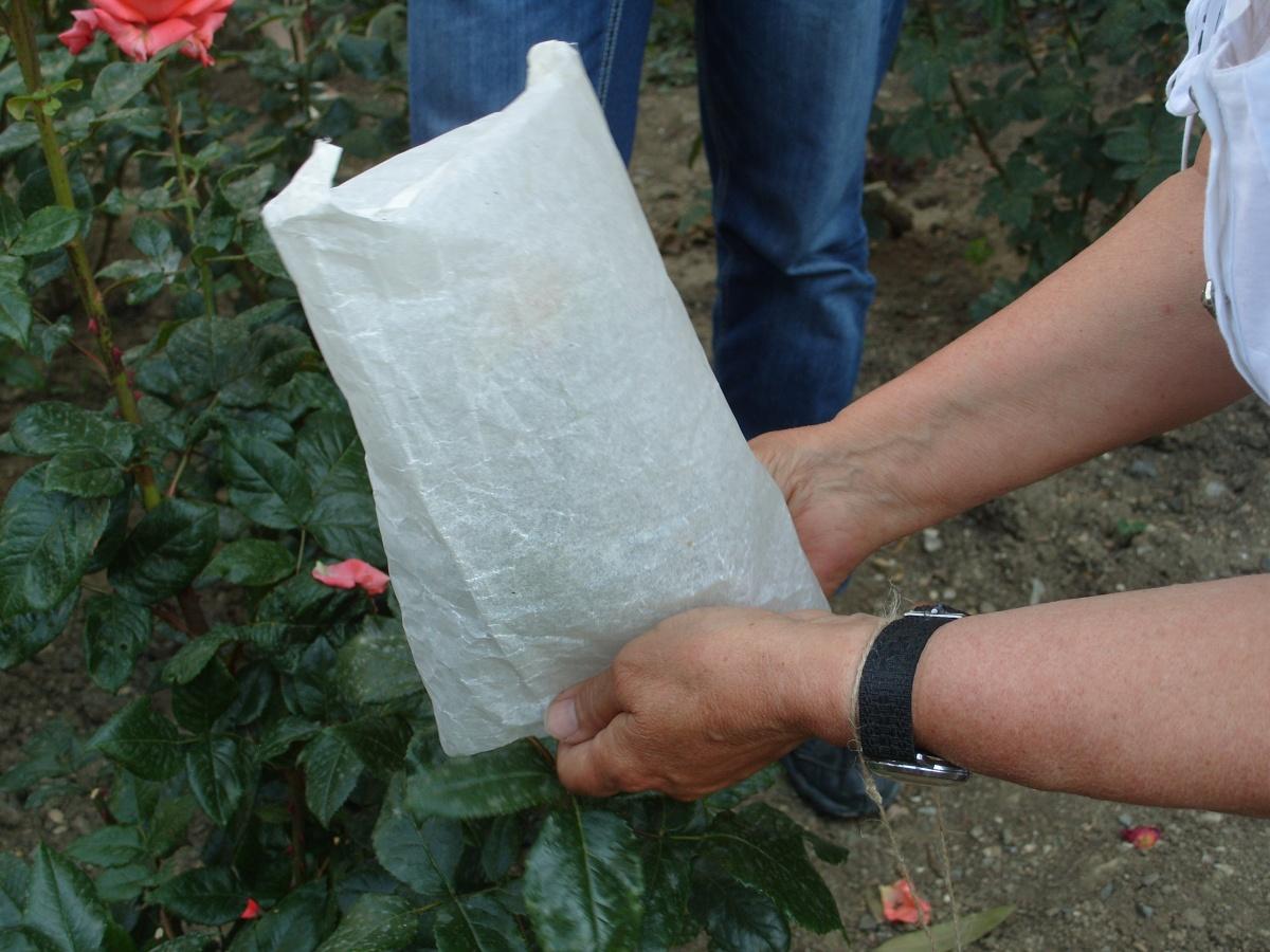 Надеваем пергаментный пакет-изолятор