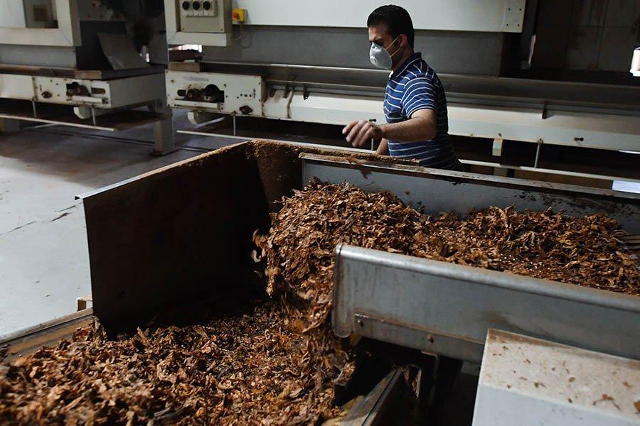 Минэкономразвития выступило против идеи запретить «дешевые сигареты»