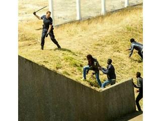 «Вот почему мигранты хозяйничают в ЕС» - иностранцы о сравнении полиции Франции и России