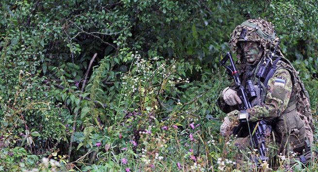 Эстонец, знай свое место: на твоей земле хозяин – НАТО!