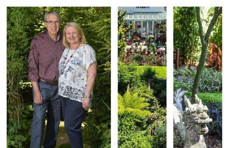 Чудо-садоводы 28 лет растили волшебный сад