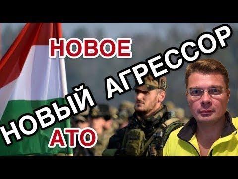 На Украине провели параллели между выдачей венгерских паспортов в Закарпатье и Крымом