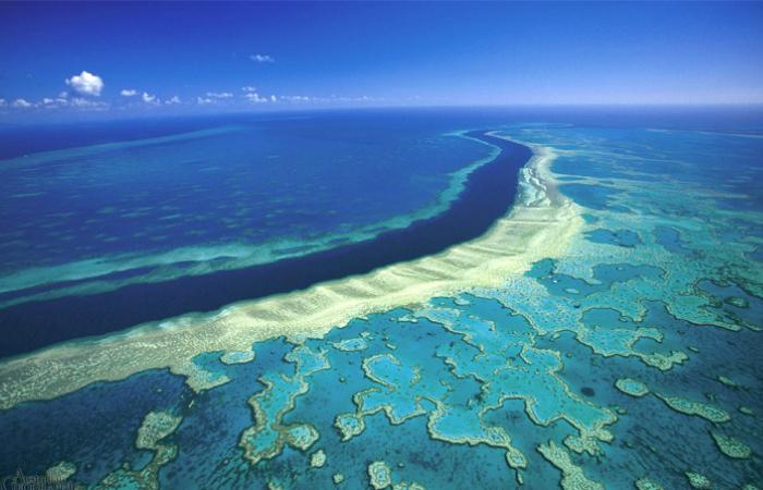 Большой барьерный риф, Австралия.
