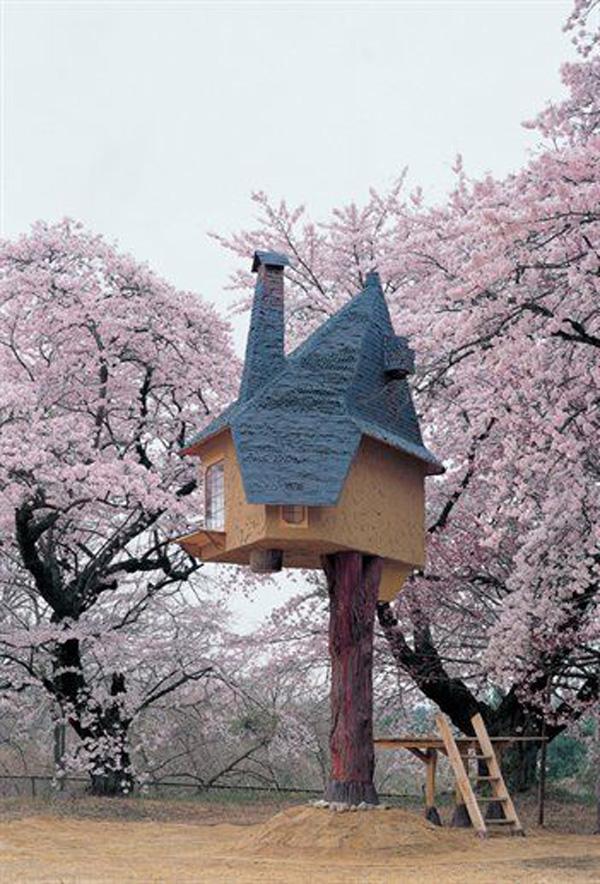 Красивые дома: фото удивят вас необычностью сооружений на деревьях