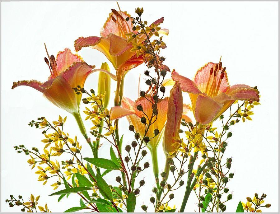 Цветочный изыск Ричарда Рейнольдса
