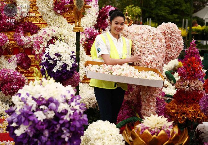 �������� ������ � ������������ ������� Chelsea Flower Show 2014