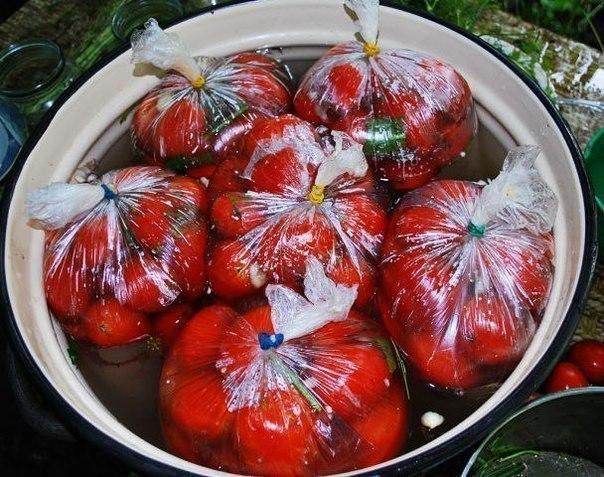 Вкусная, остренькая закуска к вашему столу без лишних заморочек — помидоры в пакетах