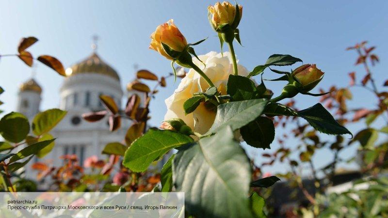 Последовать примеру Киева: в…