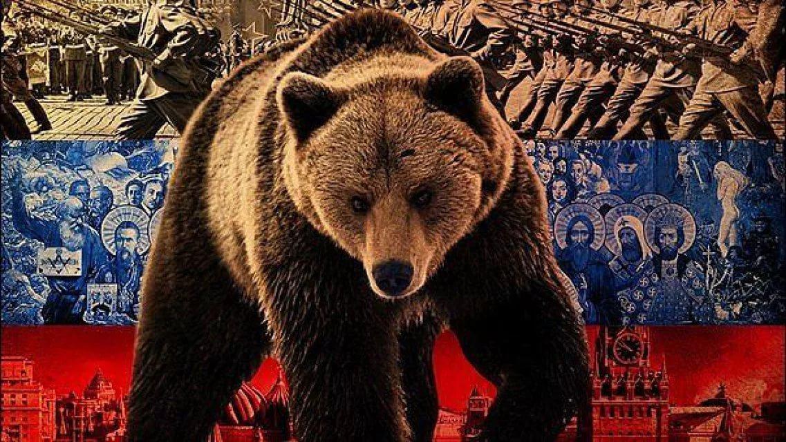 """""""Русского медведя"""" натовцы не напугали. Но """"медвежью болезнь"""" заработали"""