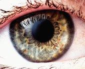 Глаукому можно устранять безопасно