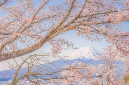 Японские пейзажи в фотографиях Такаси Комацубара (13 фото)