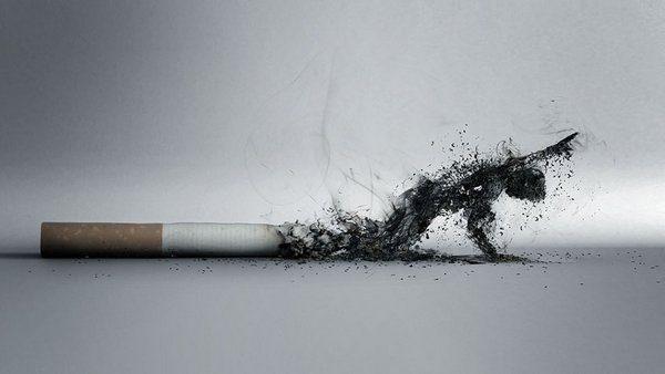 Учёные выяснили природу никотиновой зависимости
