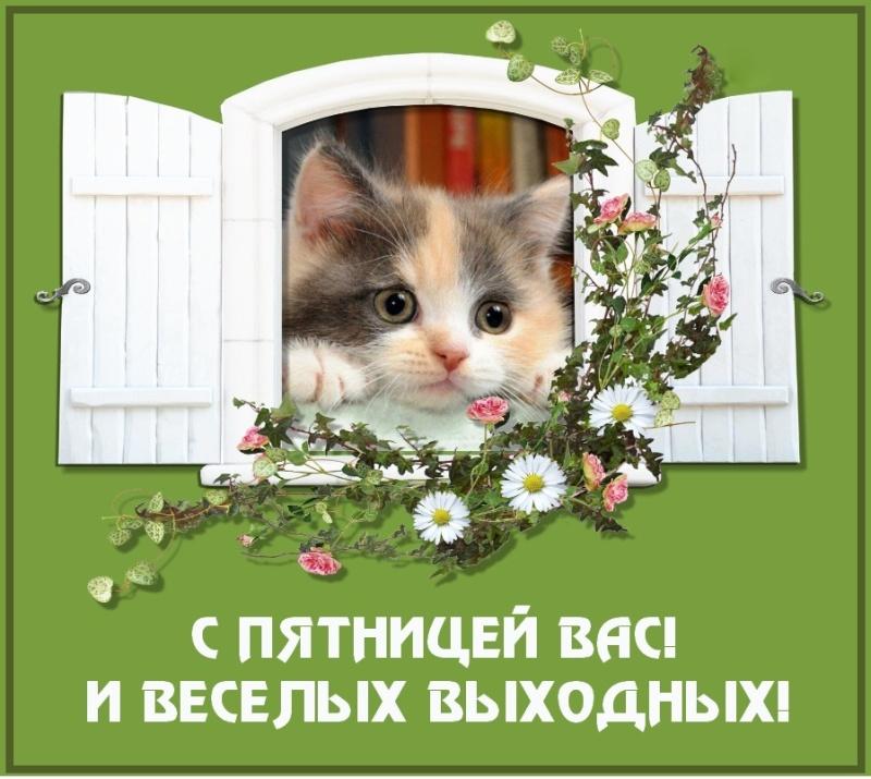 Весёлая пятница)