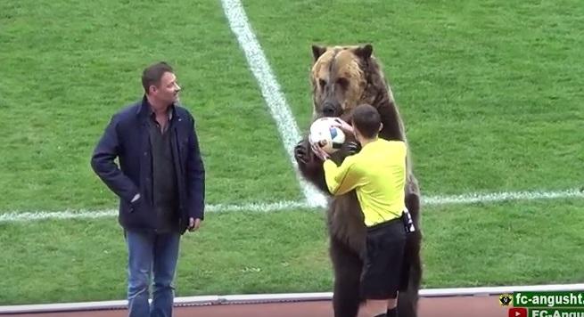 В Великобритании отреагировали на выход медведя на футбольное поле в России