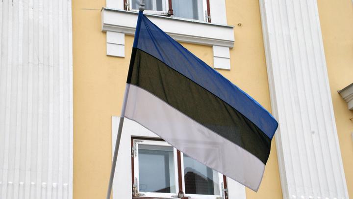 МИД Эстонии вызвал посла России ради скандала на пустом месте