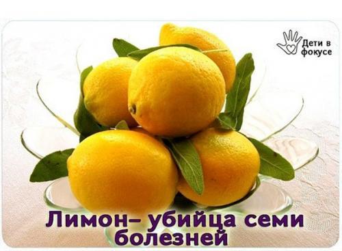 Лимон — убийца семи болезней.