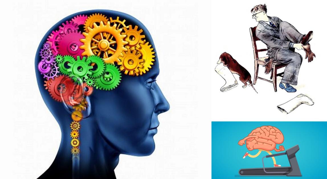 Научно доказано, что забывчивость — признак умного человека