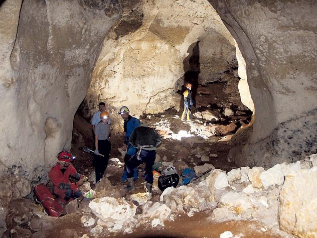 В Крыму нашли рога и копыта на миллиард евро