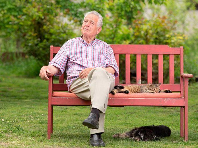 Старик плакал на скамейке в …
