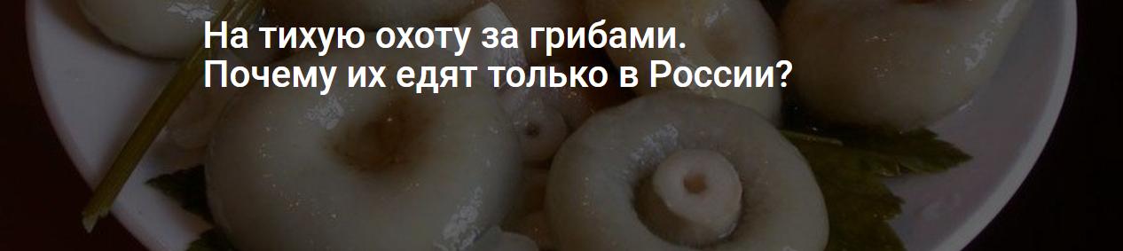 На тихую охоту за грибами. Почему их едят только в России?