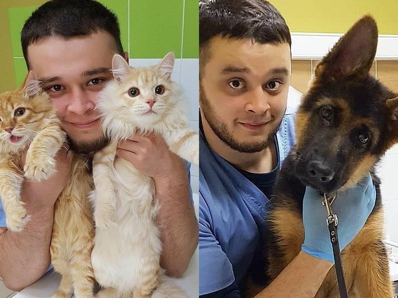 Ветеринару, спасающему животных от эвтаназии, грозит тюрьма