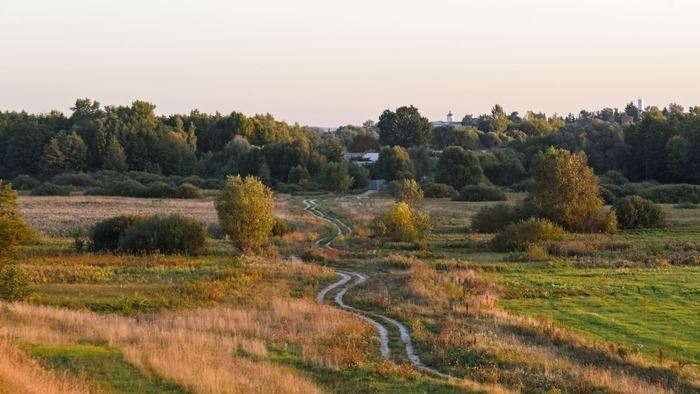 Деревенскими дорогами ... Дорога, Деревня, Природа, Трава, Лето, Фотография, Длиннопост