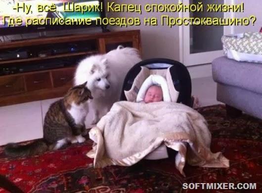 ae19eb23a8f1da9d7e31d4ae5c3_prev