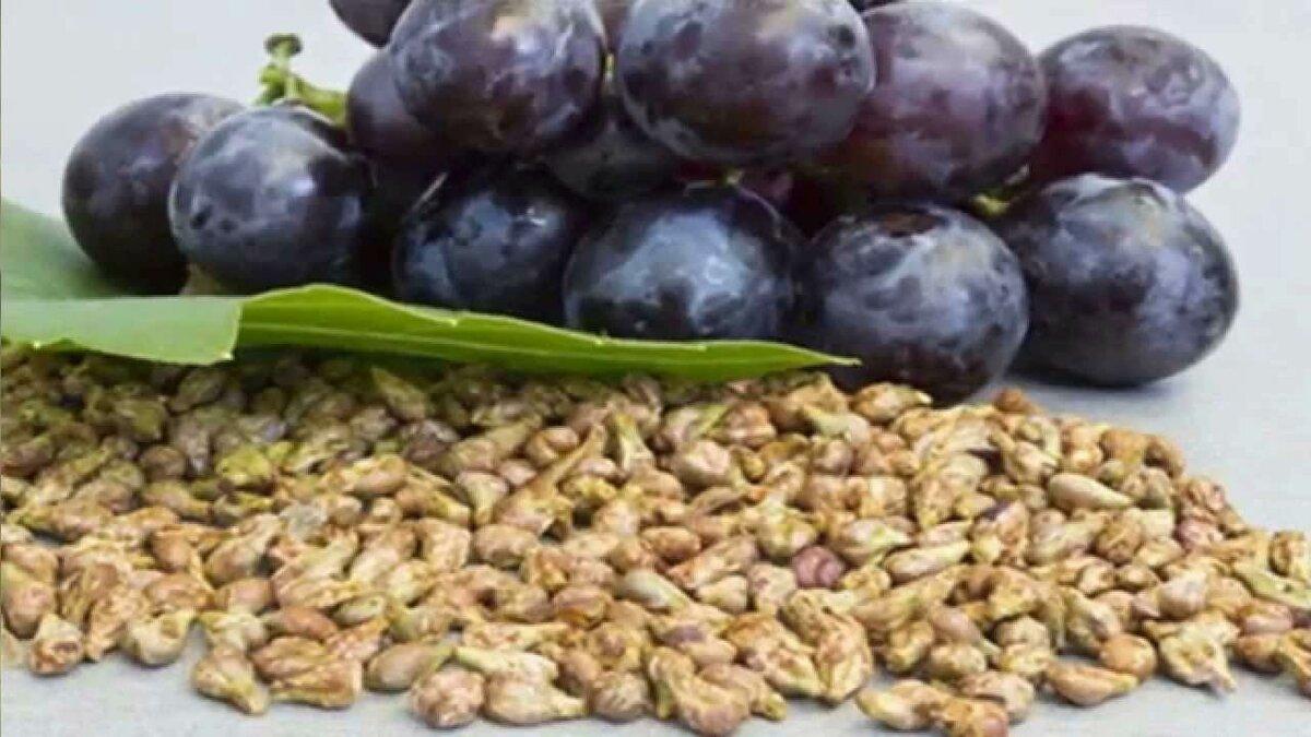 Токоферол, калий, кальций, содержащийся в виноградных косточках, несёт колоссальную пользу для организма