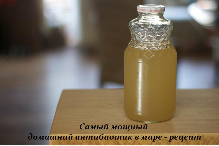 Самый мощный домашний антибиотик в мире — рецепт