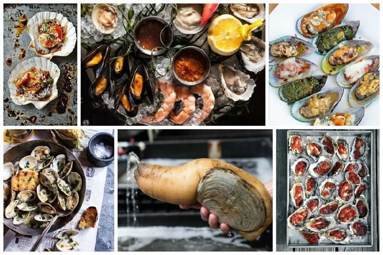 Советы по поеданию моллюсков, улиток и прочих вкусных гадов в ракушках